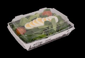 Multifood Salat mit Deckel 2021-1 Kopie